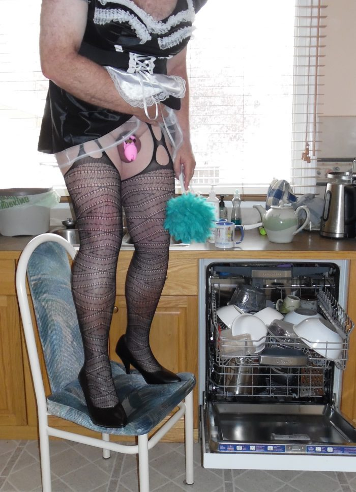 Sissy Andrea – Reduced to the Maid of the House