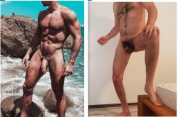stallion vs pussy