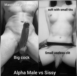 Alpha vs sissy