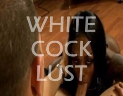Black Sissy Boys lust for white cock