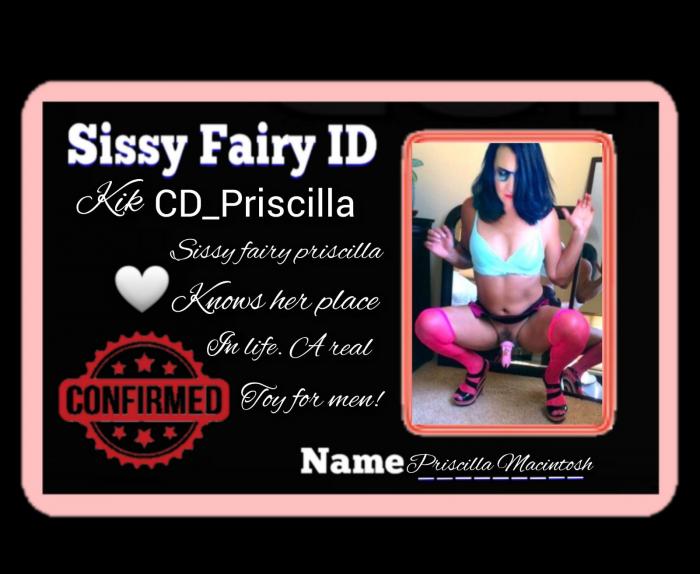 Sissy Priscilla