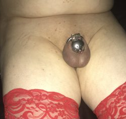 Catheter micro chastity