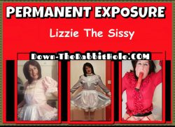 Sissy slut Elizabeth. Pink satin.. Blue satin… Blouse wearing slut