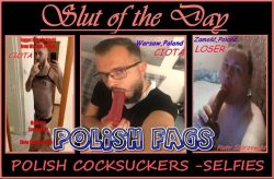 3some cocksuckers from Poland