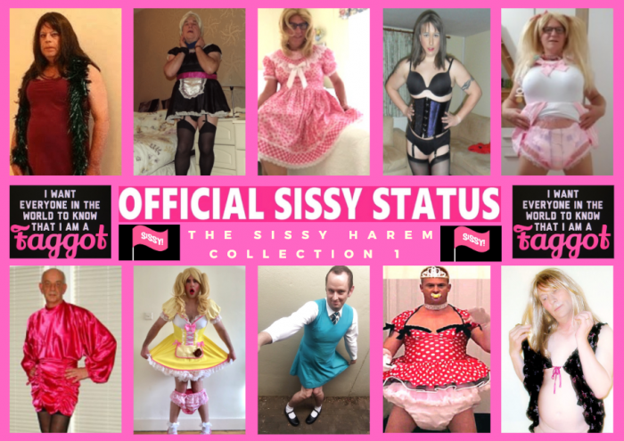 Sissy Harem Collection 1