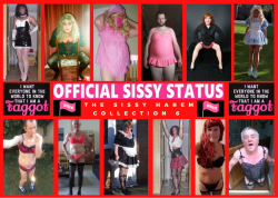 Sissy Harem Collection 6