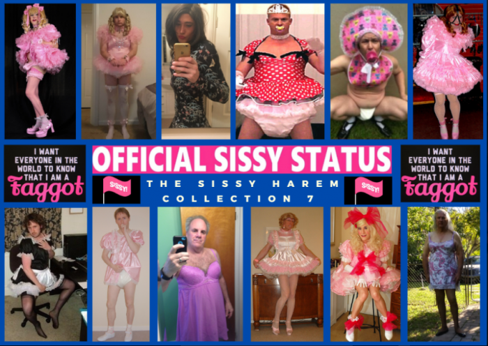 Sissy Harem Collection 7