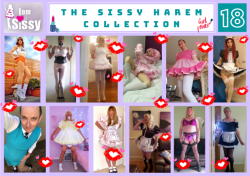 Sissy Harem Collection 18