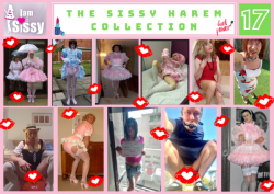 Sissy Harem Collection 17