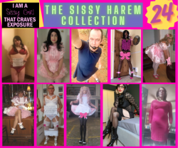 Sissy Harem Collection 24