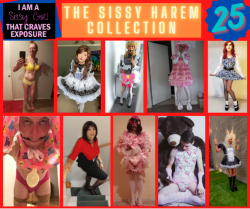 Sissy Harem Collection 25