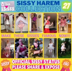 Sissy Harem Collection 27