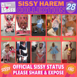 Sissy Harem Collection 28