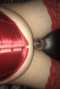 A cuck's life in the bon4 micro cage. This stainless steel chastity fits perfectly and is very s ...