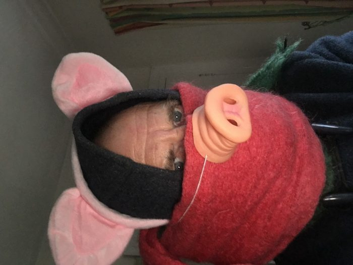 Duffled and muffled pig 2
