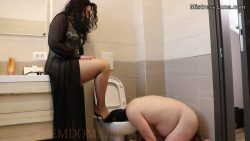 Female toilets cleaned to perfection by filthy pervert pig freak