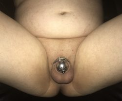 Rate my clitty.