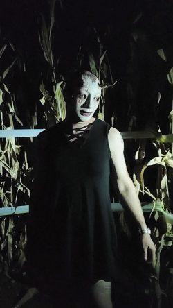 Stalking in the corn..
